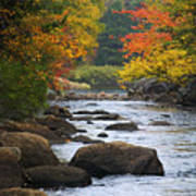 Adirondack Fall Stream 2 Poster