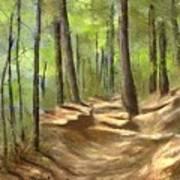 Adirondack Hiking Trails Poster