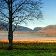 Adirondack Landscape 1 Poster