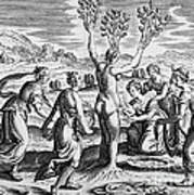 Adonis Being Born From Myrrha Poster