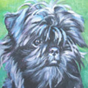 Affenpinscher Portrait Poster