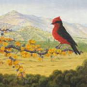Afrechero  Purpureo Poster