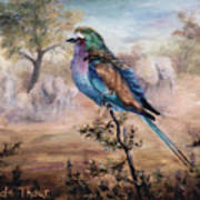 African Roller Poster by Brenda Thour