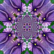 African Violet Wave Poster