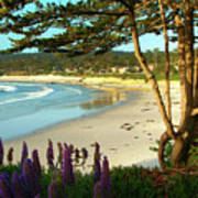 Afternoon On Carmel Beach Poster
