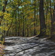 Afternoon Shadows - Oconne State Park Poster