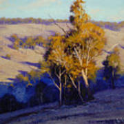 Afternoon Shadows Turon Hills  Nsw Australia Poster