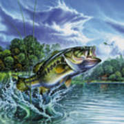 Airborne Bass Poster by Jon Q Wright