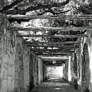 Alamo Corridor Poster