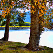 Alder Lake In The Fall Poster