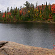 Algonquin Provincial Park Ontario Poster