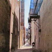 Alley W Guy Reading Poster
