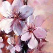 Almonds Blossom  12 Poster