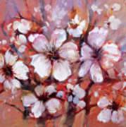 Almonds Blossom  8 Poster