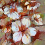 Almonds Blossom1 Poster