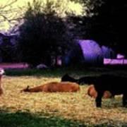 Alpacan Twilight Poster
