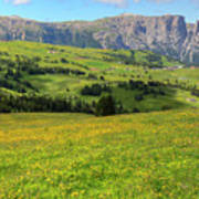 Alpe Di Siusi - Dolomiti Poster