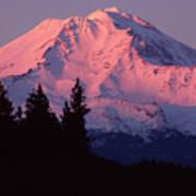 Alpenglow - Mt Shasta Poster