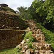 Altun Ha Maya Ruins Poster