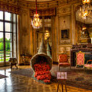 Amaryllis In The Castle, Belgium Poster