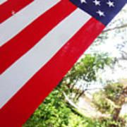 American Flag 1 Poster