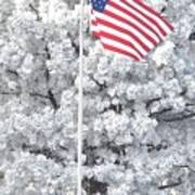 American Flag Snow  Poster