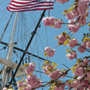 American Flag With Cherry Blossoms Poster