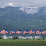 American Flags Honoring Veterans Poster by James P. Blair