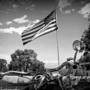 American Renagades Poster by Rhonda DePalma