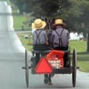 Amish Boys On A Ride Poster by Lori Seaman