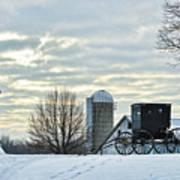 Amish Buggy At Morning Poster