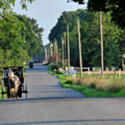 Amish Buggy Sunny Summer Poster