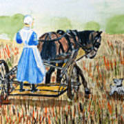 Amish Girl With Buggy Poster