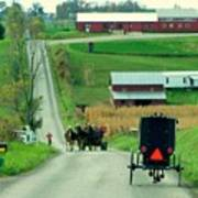 Amish Horse And Buggy Farm Poster
