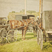 Amish Wagons Poster