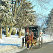 Amish Winter Poster by David Arment