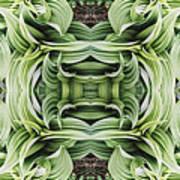 Ammonoosuc Green Poster