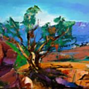 Among The Red Rocks - Sedona Poster