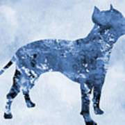 Amstaff-blue Poster