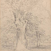 An Ancient Tree With Figures In A Landscape Poster