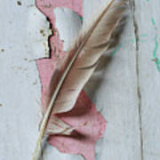 An Old Door And Feather Poster