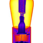 An X-ray Of Historic Audion Vacuum Tube Poster