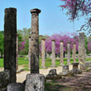 Ancient Ruins Tree By Columns Poster
