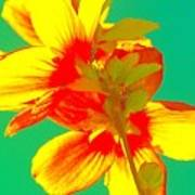 Andy Warhol Inspired Yellow Flower Poster