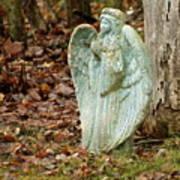 Angel In The Woods Poster by Danielle Allard