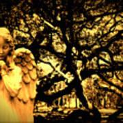 Angel Oak Poster