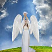 Angel Releasing A Dove Poster by Jill Battaglia