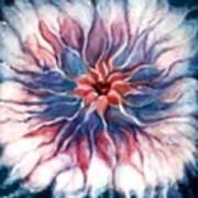Angora Bloom Poster