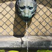 Animal Fountain Head Poster by Teresa Mucha