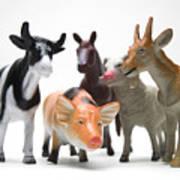 Animals Figurines Poster